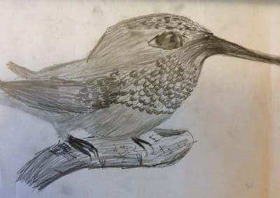 Noah R Hummingbird